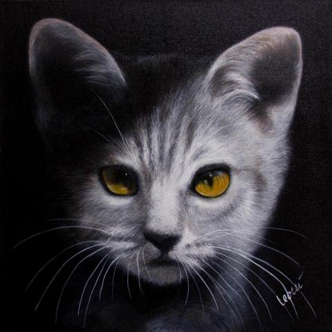 Gemälde Tierportrait 50x50 cm